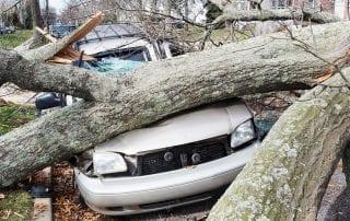 Comprehensive car insurance in Lutz, Florida